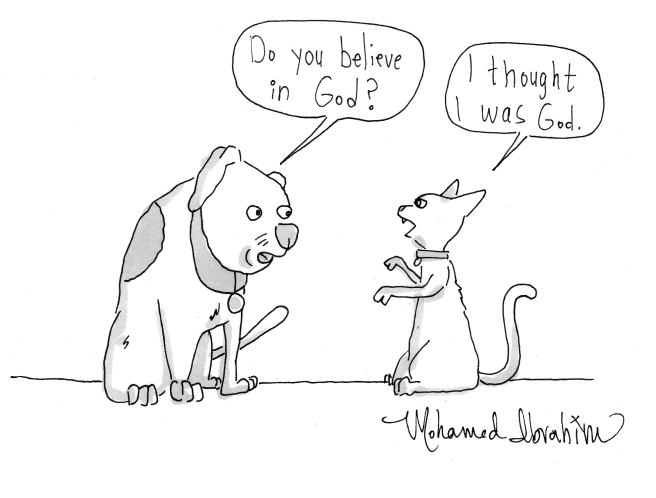 dog humor.png